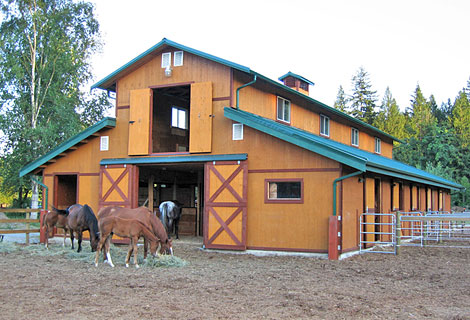 Book horse boarding for Horse barn materials